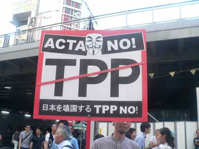 ACTA NO!.jpg