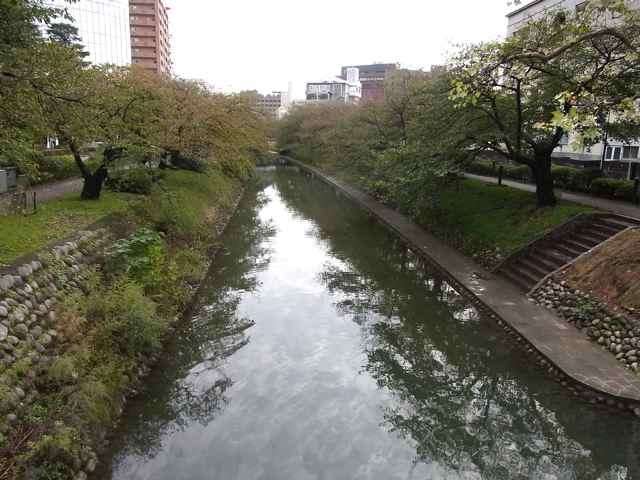 きれいな川.jpg