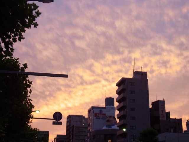 すごい夕焼けだった.jpg