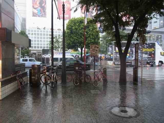 ほんとに土砂降りになっちゃった。.jpg