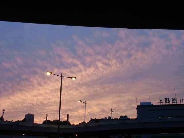 上野駅の夕焼け.jpg