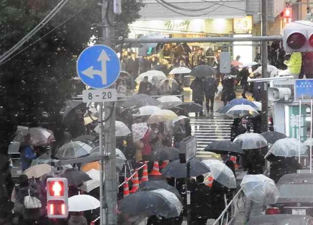 傘だらけ。.jpg