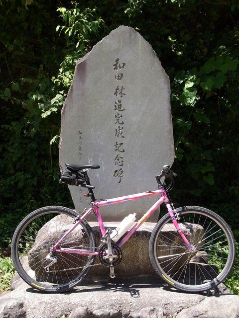 和田峠碑.jpg