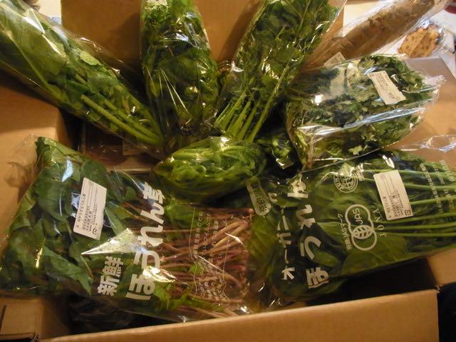 林さんから、たくさんの野菜!.jpg