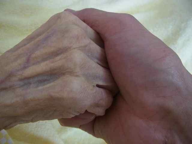母の手、子の手。.jpg
