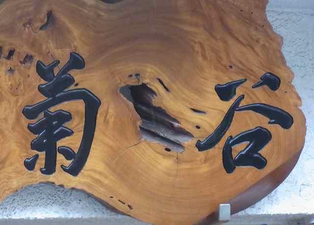 菊谷1.jpg