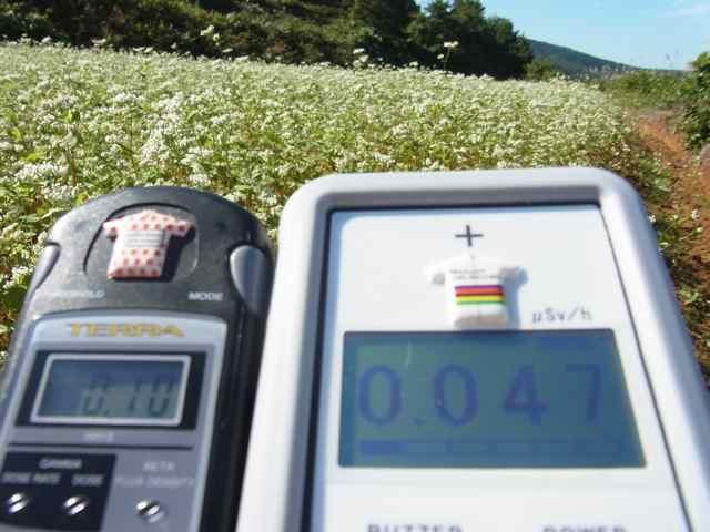 蕎麦畑0.10 0.047.jpg