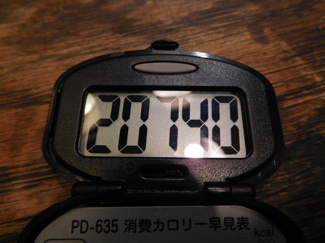 DSCN2074.jpg