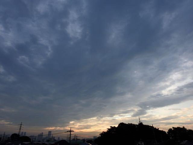 DSCN9889.jpg