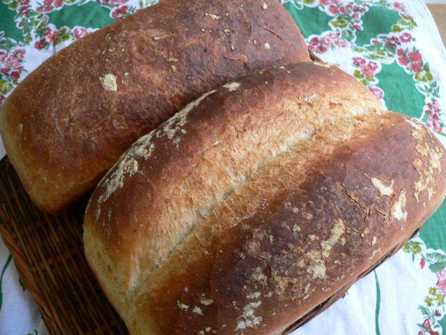 100709女将イギリスパン.jpg