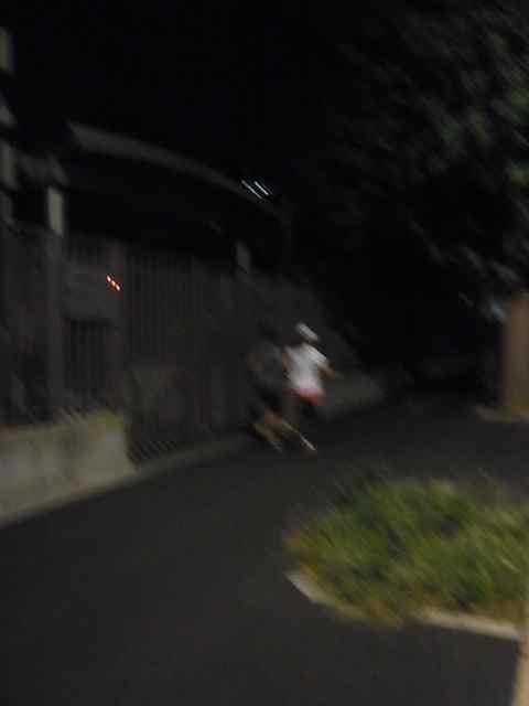 国会議事堂を周回するマラソンカップル.jpg
