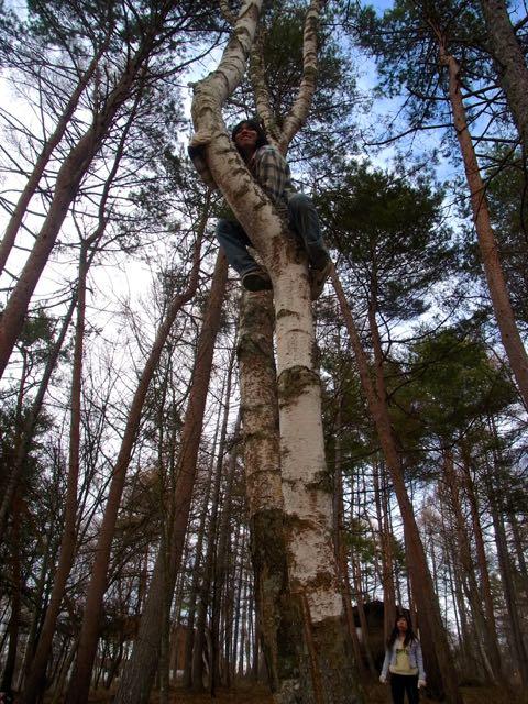 子リスはやはり、木に登る。.jpg