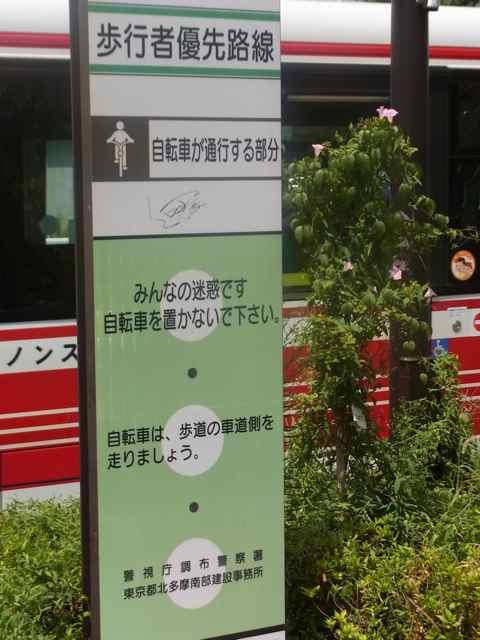 自転車道路2.jpg