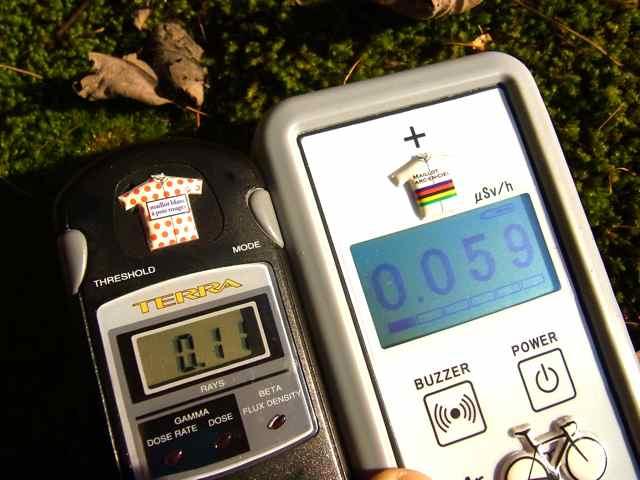 苔の直上0.11 0.059.jpg