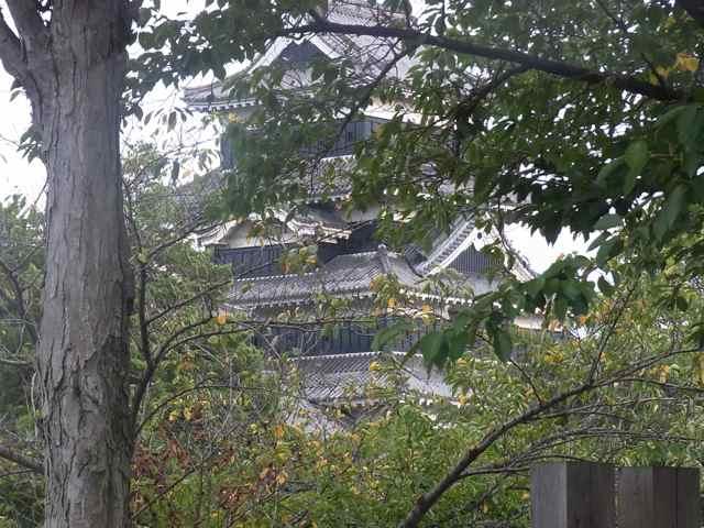 迷彩状態の松本城.jpg