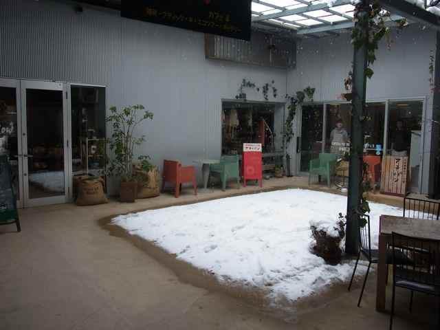 中庭も雪.jpg