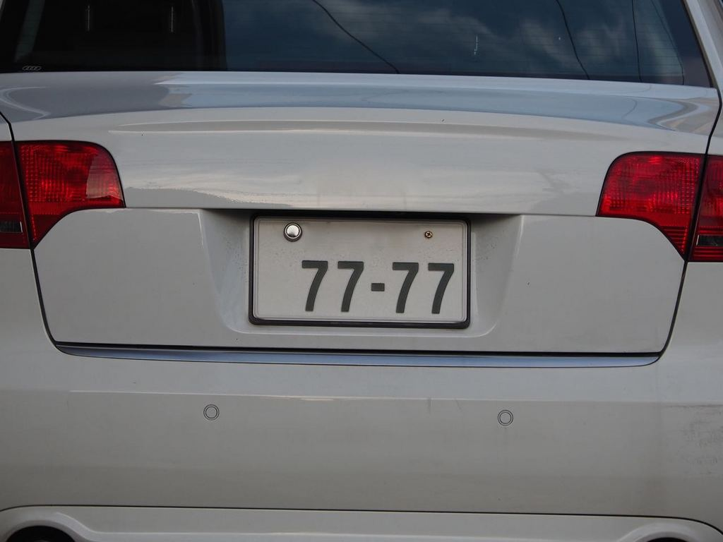 P7310564.jpg