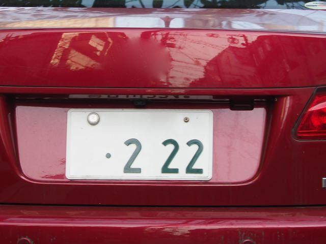 PB134779.jpg